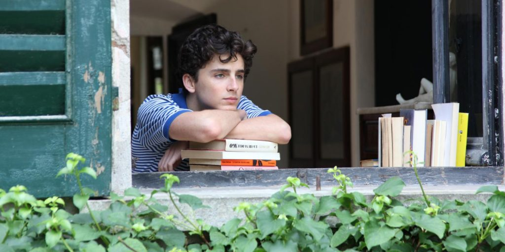 Timothée Chalamet en Llámame por tu nombre (Call me by your name)